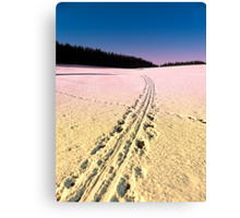 Cross country skiing   winter wonderland   landscape photography Canvas Print