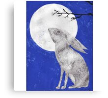 March Moon Gazing Hare Canvas Print