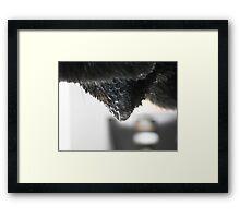 ©NS Dropping IA Framed Print