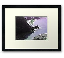 Newquay sea monster Framed Print