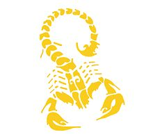 Scorpion Yellow by AmazingMart