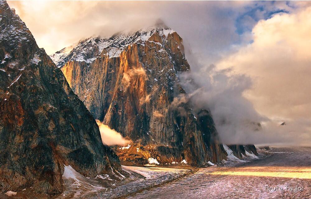 Denali Wilderness by Bruce Taylor
