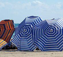 Sunny Day at the Beach by Eva Kato