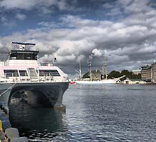 Bergen Harbour  -  Under the Cat. (1) by cullodenmist