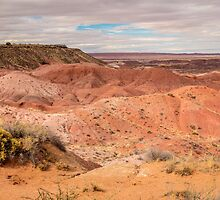 Painted Desert on a Cloudy Afternoon by Robert Kelch, M.D.