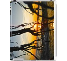 Droplets iPad Case/Skin