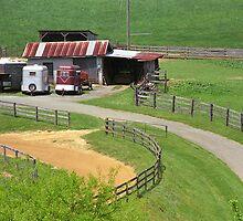 Virginia Countryside by Frank Romeo