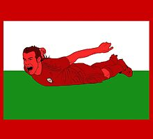 Gareth Bale Welsh Dragon by palomedridista