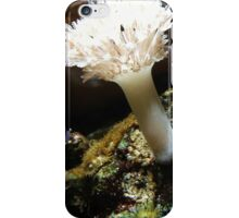 UnderseaLife iPhone Case/Skin