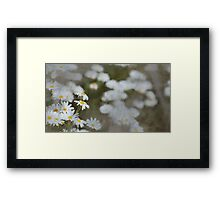 Flowers of a Dream Framed Print