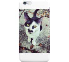 my cat iPhone Case/Skin