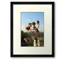 Object Art 3 Framed Print