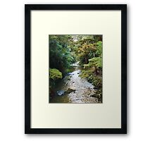 River/Nature Framed Print