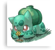 Flower for cutie~ Canvas Print