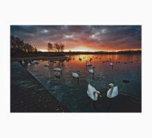 Swan Lake at Sunset One Piece - Short Sleeve