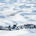 Winter in Palouse by Jim Stiles