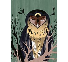 Wooden Owl Photographic Print