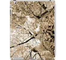 Colorless Fall iPad Case/Skin