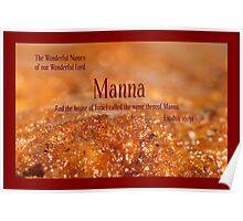 Manna Poster