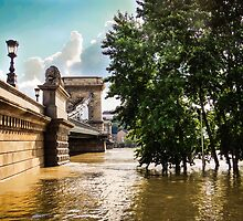 River and bridge during flood by Robert Hollo