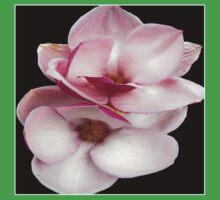 tulip magnolia twins (black bg square) Baby Tee