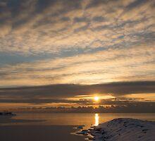Bright, Icy Daybreak on the Lake by Georgia Mizuleva