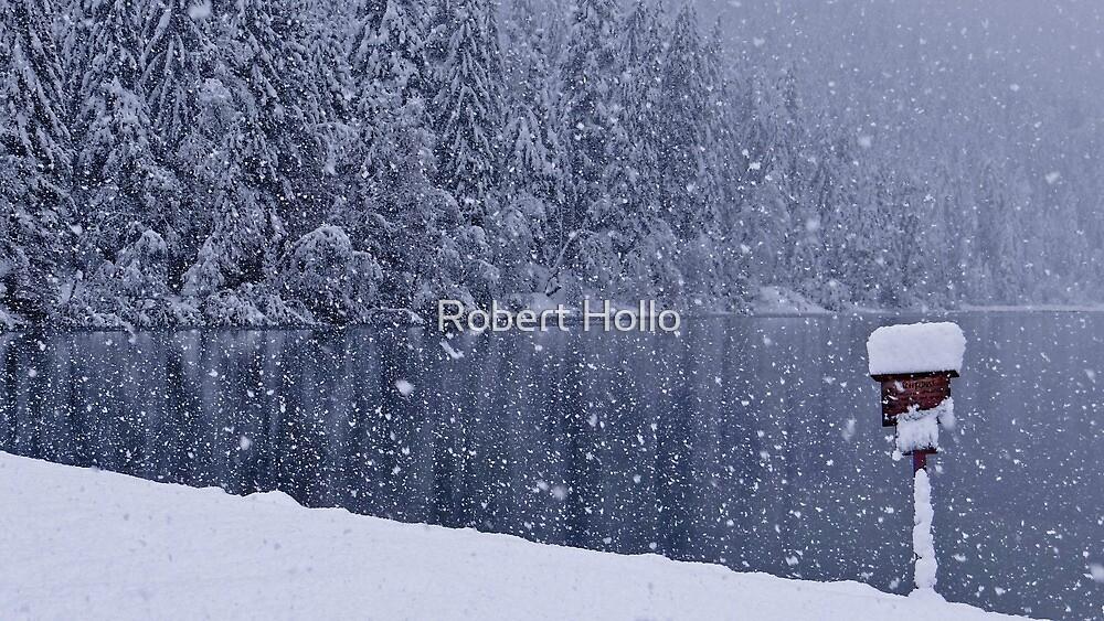 Heavy snowfall at the lake by Robert Hollo