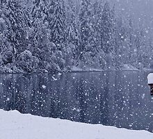Heavy snowfall at the lake by Robert Hollo