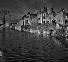 Neath Abbey by Paula J James