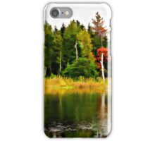Forest Reflections iPhone Case/Skin