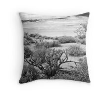 Sonoran Desert Song in Black and White Throw Pillow