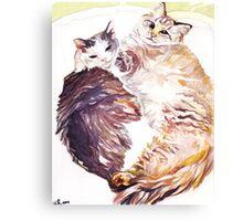 Cat Snuggles Canvas Print