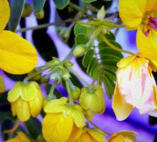 Splendid yellow flowers Sticker
