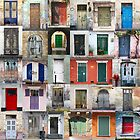 Old Doors by Igor Shrayer by Igor Shrayer
