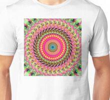 Spinning Wheel of Symmetry Unisex T-Shirt