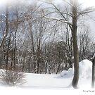 Snow Forest by DreamCatcher/ Kyrah Barbette L Hale