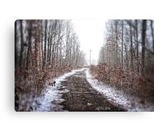Old Snow Road HDR Canvas Print