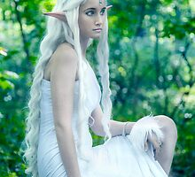 The Last Unicorn by Lopti