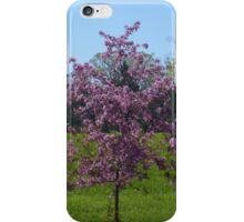 Pink Trees iPhone Case/Skin