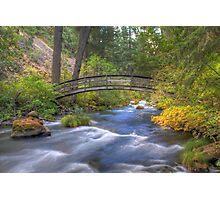 Bridge over Water Photographic Print