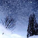 winter  by JOSEPHMAZZUCCO