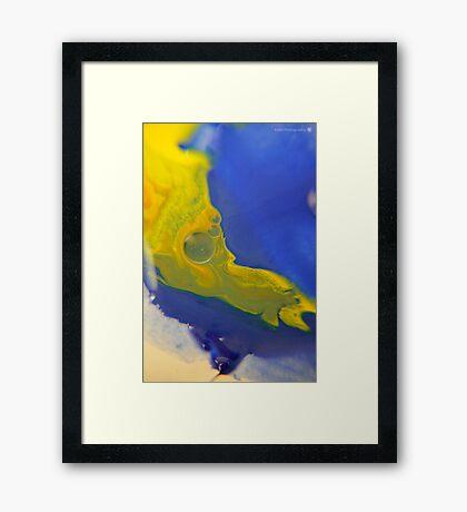 Macro Acrylic Paints  Framed Print