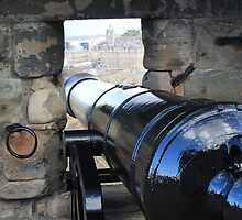 Looking out over a canon from Edinburgh Castle by Pat Millar