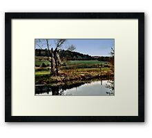 Alter Baum am Fluss  Framed Print