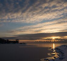 New Day on Ice - Sunrise on Lake Ontario  by Georgia Mizuleva