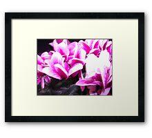 Bright Beauty Framed Print