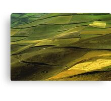 Fields in the Andes Canvas Print