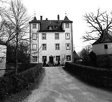 Nuremberg - Hummelstein Castle by Franz Roth