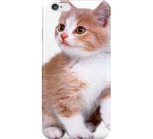Kitten! Sale!!! iPhone Case/Skin