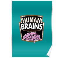 Human Brains Poster